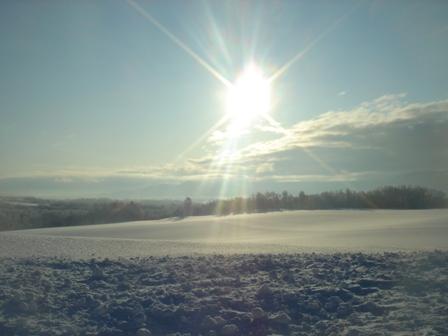 新年の陽光