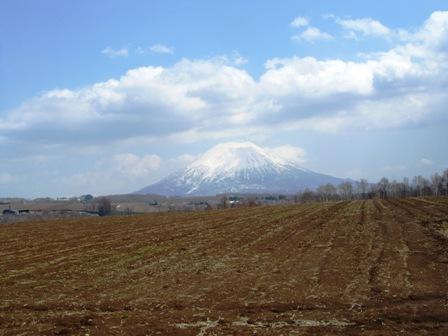 2011_05youtei